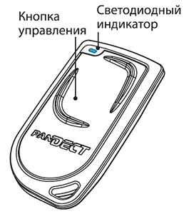 pandect x-1100 метка